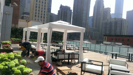 Beautification at IO Urban Roofscape - Chicago's largest indoor-outdoor lounge.